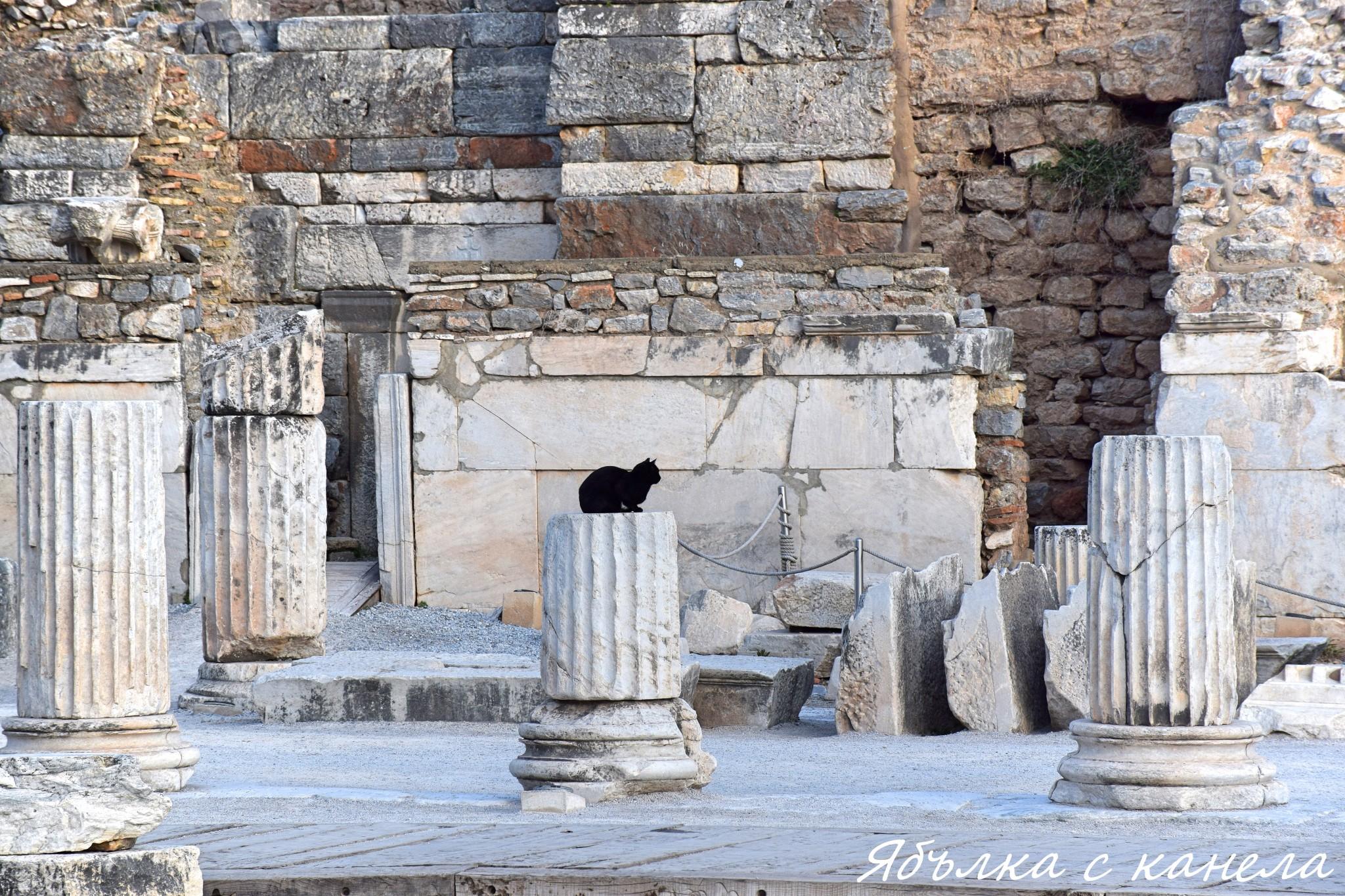 Eфес 2