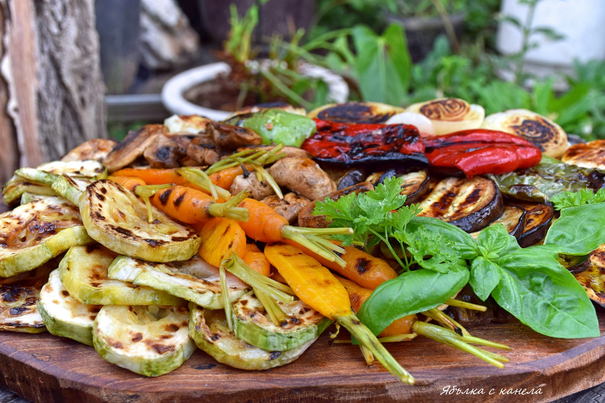 зеленчуци 3