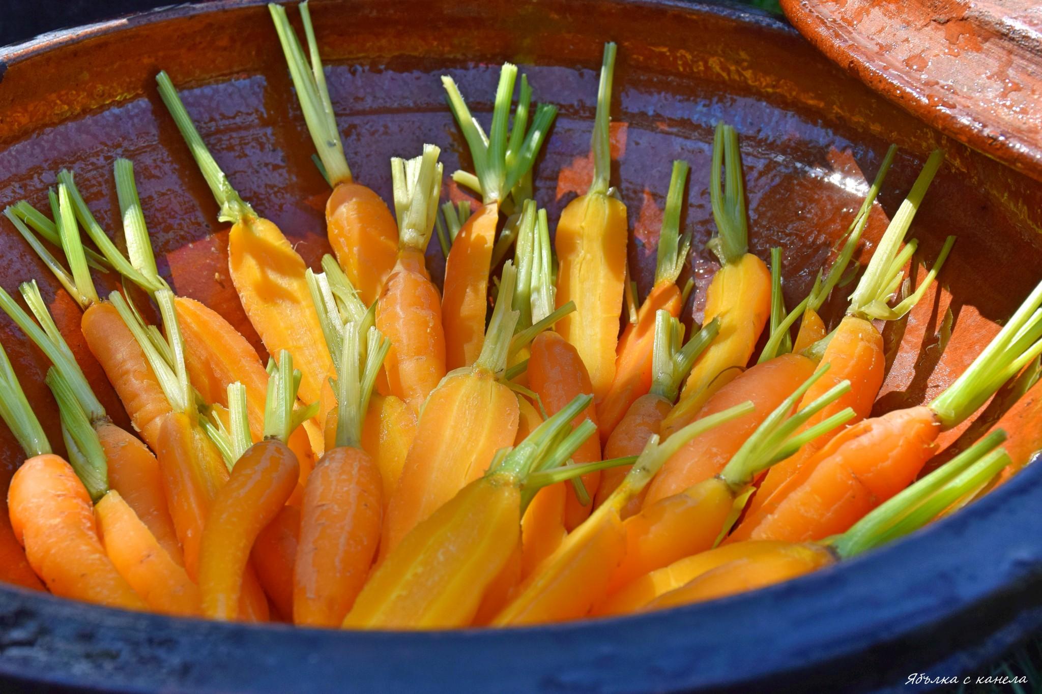 моркови2